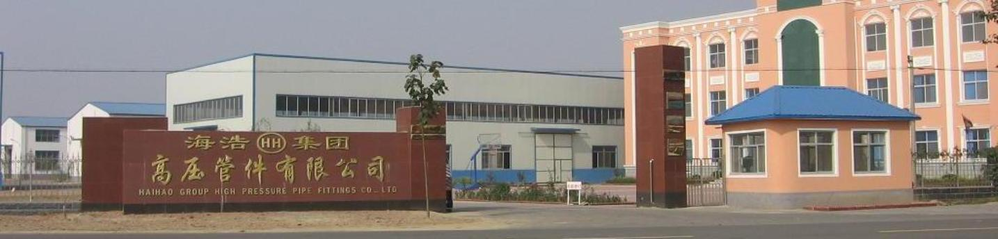 Hebei HaiHao High Pressure Flange & Pipe Fitting Group Co,.Ltd